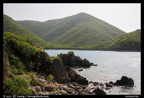 Jagged shoreline and green hills, Great Lameshur Bay. Virgin Islands National Park (color)
