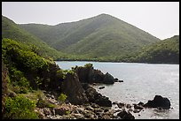 Jagged shoreline and green hills, Great Lameshur Bay. Virgin Islands National Park ( color)