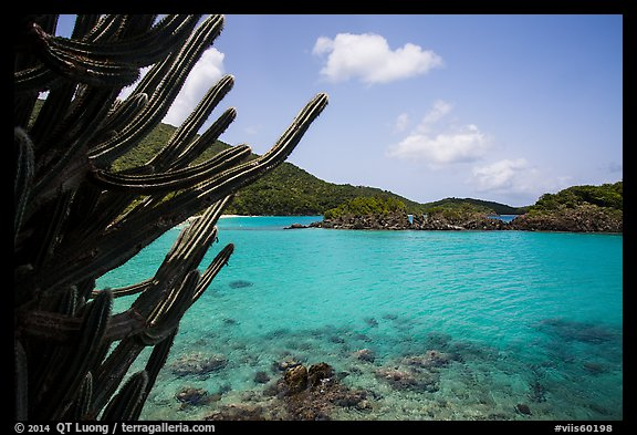 Cactus and Trunk Cay, Trunk Bay. Virgin Islands National Park (color)