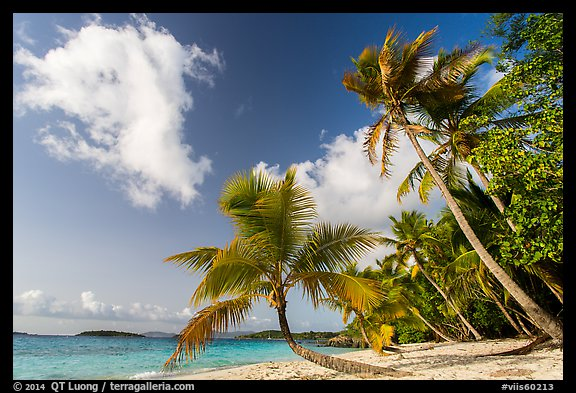 Salomon Beach. Virgin Islands National Park (color)