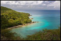 Forested slopes and reef, Hassel Island. Virgin Islands National Park ( color)