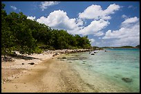 Shoreline and reef, Hassel Island. Virgin Islands National Park ( color)