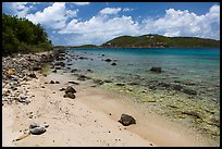 Beach, Hassel Island. Virgin Islands National Park ( color)