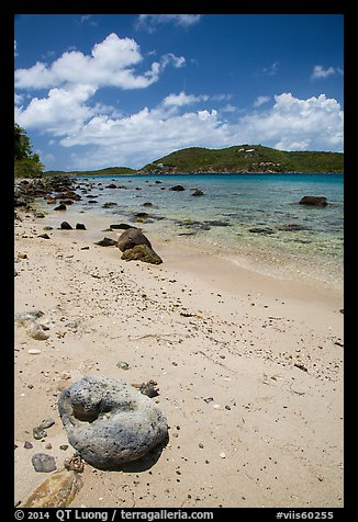 Coral rock and beach, Hassel Island. Virgin Islands National Park (color)