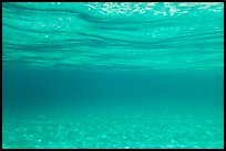Underwater picture of sand and water. Virgin Islands National Park ( color)