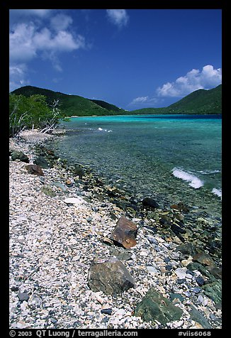 Shore and Turquoise waters, Leinster Bay. Virgin Islands National Park (color)
