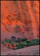 Rock wall, the Olgas. Australia ( color)