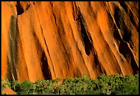Walls of Ayers Rock. Uluru-Kata Tjuta National Park, Northern Territories, Australia