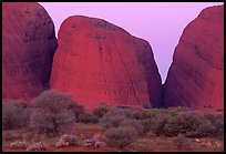 Olgas, dusk. Olgas, Uluru-Kata Tjuta National Park, Northern Territories, Australia (color)