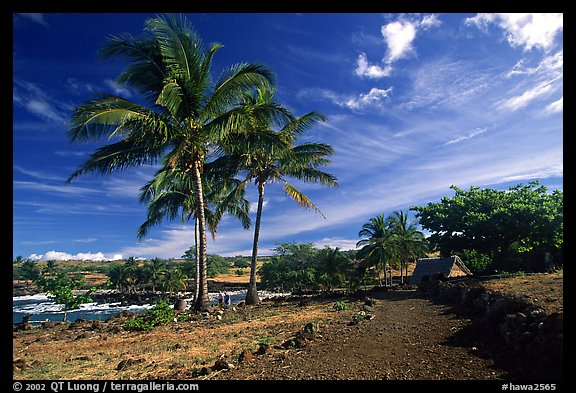 Lapakahi historical park. Big Island, Hawaii, USA (color)