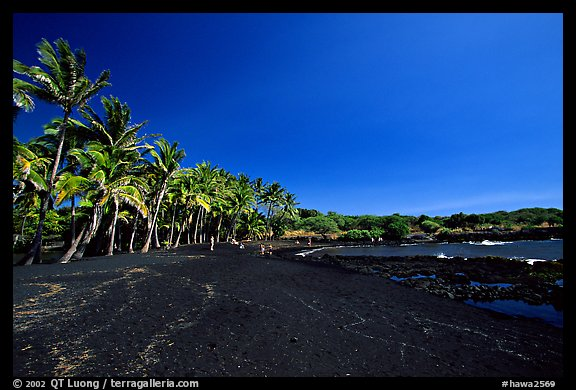 Black Sand Beach South Point Hawaii