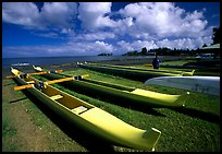 Traditional outtrigger canoes in Hilo. Big Island, Hawaii, USA (color)