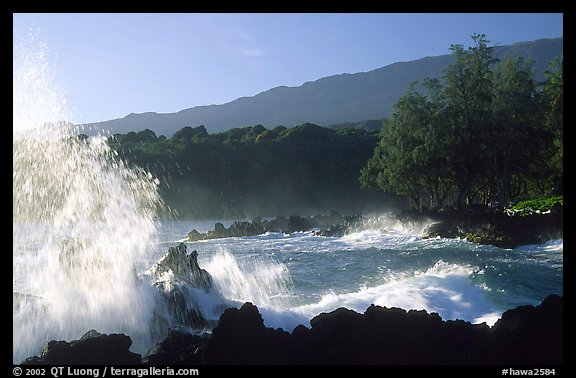 Crashing wave, Keanae Peninsula. Maui, Hawaii, USA (color)