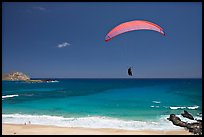 Paragliding above Makapuu Beach. Oahu island, Hawaii, USA ( color)