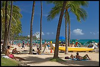 Beach scene with palm trees. Waikiki, Honolulu, Oahu island, Hawaii, USA