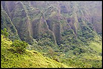 Flutted mountains near Pali highway,. Oahu island, Hawaii, USA