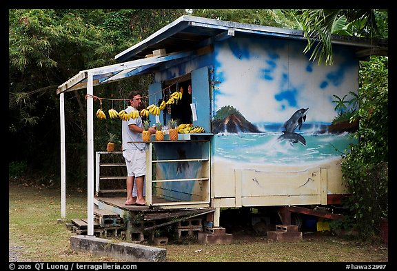 Man shopping at decorated fruit stand. Oahu island, Hawaii, USA (color)
