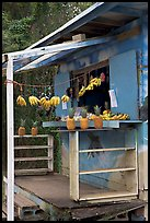 Decorated fruit stand. Oahu island, Hawaii, USA ( color)