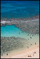 Beach and reef, Hanauma Bay. Oahu island, Hawaii, USA (color)