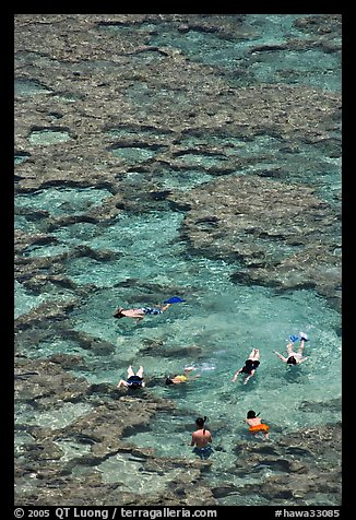 Snorkling in Hanauma Bay. Oahu island, Hawaii, USA (color)