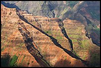 Ridges, Waimea Canyon, afternoon. Kauai island, Hawaii, USA ( color)
