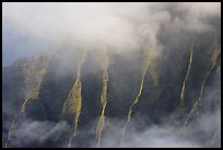 Fluted ridges seen through mist, Kalalau lookout, late afternoon. Kauai island, Hawaii, USA ( color)