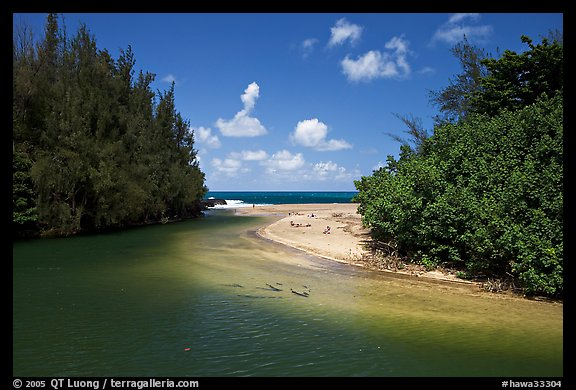 Stream and beach. North shore, Kauai island, Hawaii, USA (color)