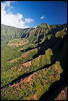 Aerial view of a valley, Na Pali Coast. Kauai island, Hawaii, USA (color)