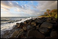 Boulders and coastline, Lydgate Park, sunrise. Kauai island, Hawaii, USA ( color)