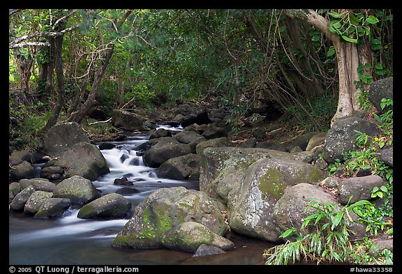 Stream, Haena beach park. North shore, Kauai island, Hawaii, USA (color)