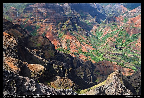 Waimea Canyon, afternoon. Kauai island, Hawaii, USA (color)