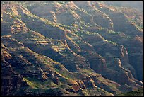 Ridges, lower Waimea Canyon, early morning. Kauai island, Hawaii, USA (color)
