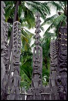 Polynesian idols, Puuhonua o Honauau National Historical Park. Big Island, Hawaii, USA (color)