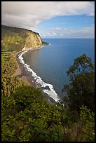 Waipio Beach from overlook, early morning. Big Island, Hawaii, USA ( color)