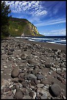 Rocks and black sand beach, Waipio Valley. Big Island, Hawaii, USA ( color)