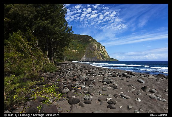 Waipio Beach covered with black sand. Big Island, Hawaii, USA (color)