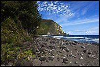 Waipio Beach covered with black sand. Big Island, Hawaii, USA ( color)