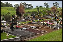 Hilo cemetery. Big Island, Hawaii, USA