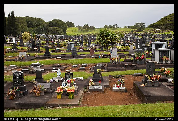 Japanese graves, Hilo. Big Island, Hawaii, USA (color)