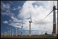 Old Kamoa wind farm, South Point. Big Island, Hawaii, USA (color)