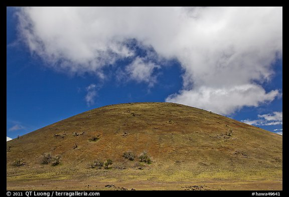 Cinder cone covered with grass, clouds. Big Island, Hawaii, USA (color)