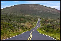 Winding road and hill. Maui, Hawaii, USA (color)