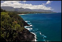 Coastline from Kilauea Point. Kauai island, Hawaii, USA ( color)