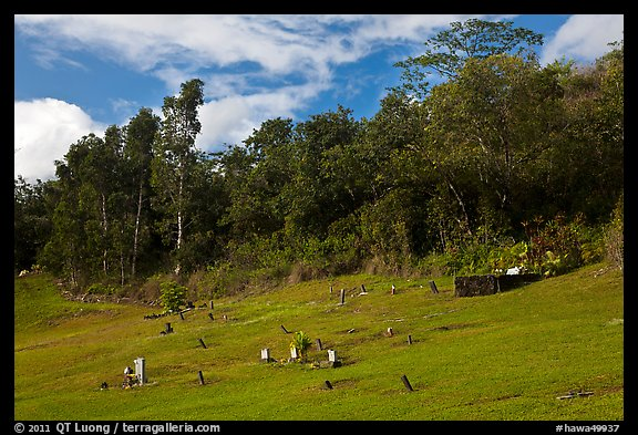 Graves on grassy slope, Hanalei Valley. Kauai island, Hawaii, USA (color)