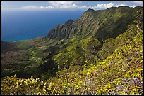 Kalalau Valley and fluted mountains. Kauai island, Hawaii, USA ( color)