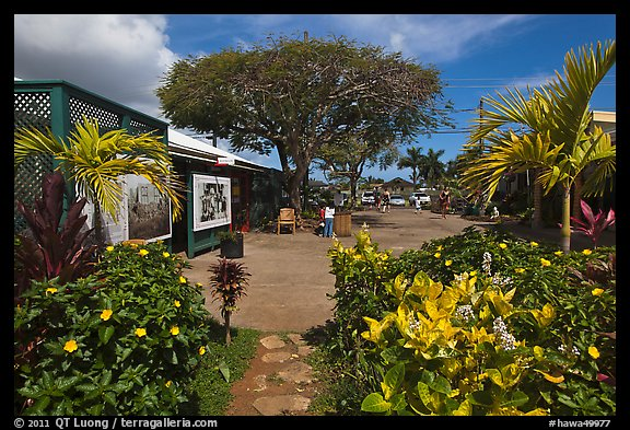 Kilauea market. Kauai island, Hawaii, USA (color)