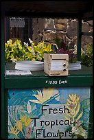 Self-serve fresh tropical flowers stand. Kauai island, Hawaii, USA