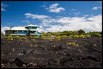 House and recently hardened lava. Big Island, Hawaii, USA ( color)