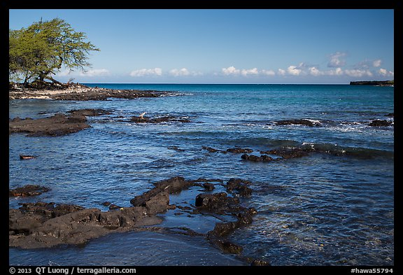 Rocks with bird in distance, Kiholo Bay. Big Island, Hawaii, USA (color)