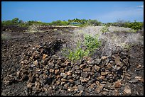 Ancient rock enclosures, Kaloko-Honokohau National Historical Park. Hawaii, USA (color)